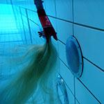 Haarfangprüfung
